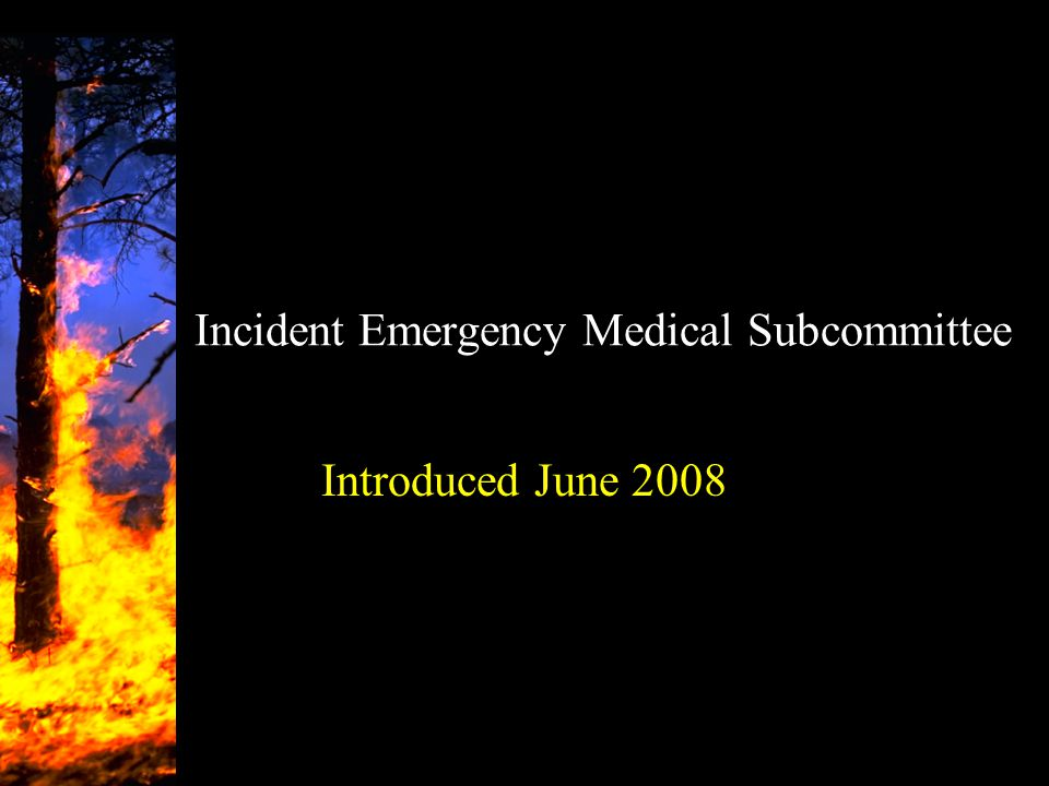 Incident Emergency Medical Subcommittee Introduced June 2008