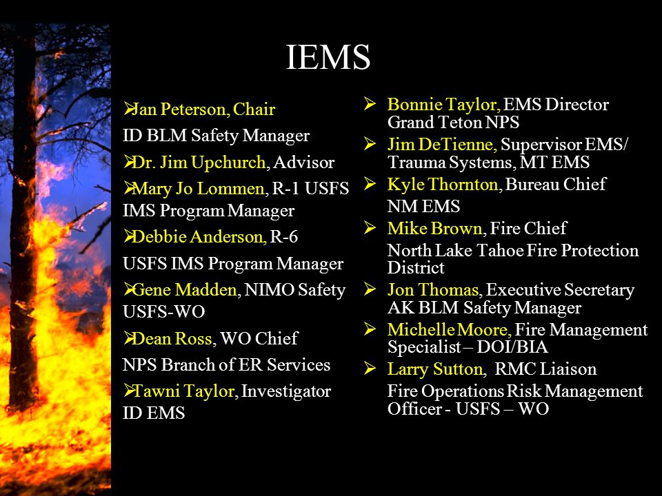 IEMS  Jan Peterson, Chair ID BLM Safety Manager  Dr. Jim Upchurch, Advisor  Mary Jo Lommen, R-1 USFS IMS Program Manager  Debbie Anderson, R-6 USF