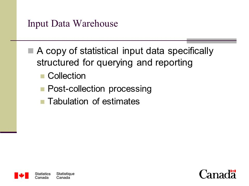Input Data Warehouse A copy of statistical input data specifically structured for querying and reporting Collection Post-collection processing Tabulation of estimates