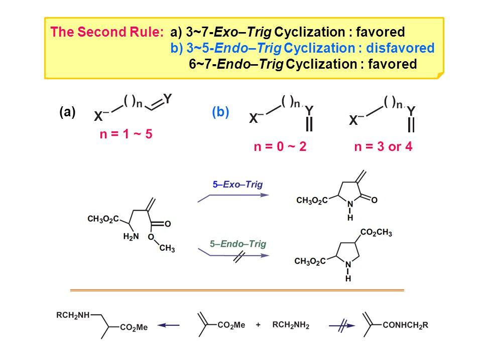The Second Rule: a) 3~7-Exo–Trig Cyclization : favored b) 3~5-Endo–Trig Cyclization : disfavored 6~7-Endo–Trig Cyclization : favored (a) (b)
