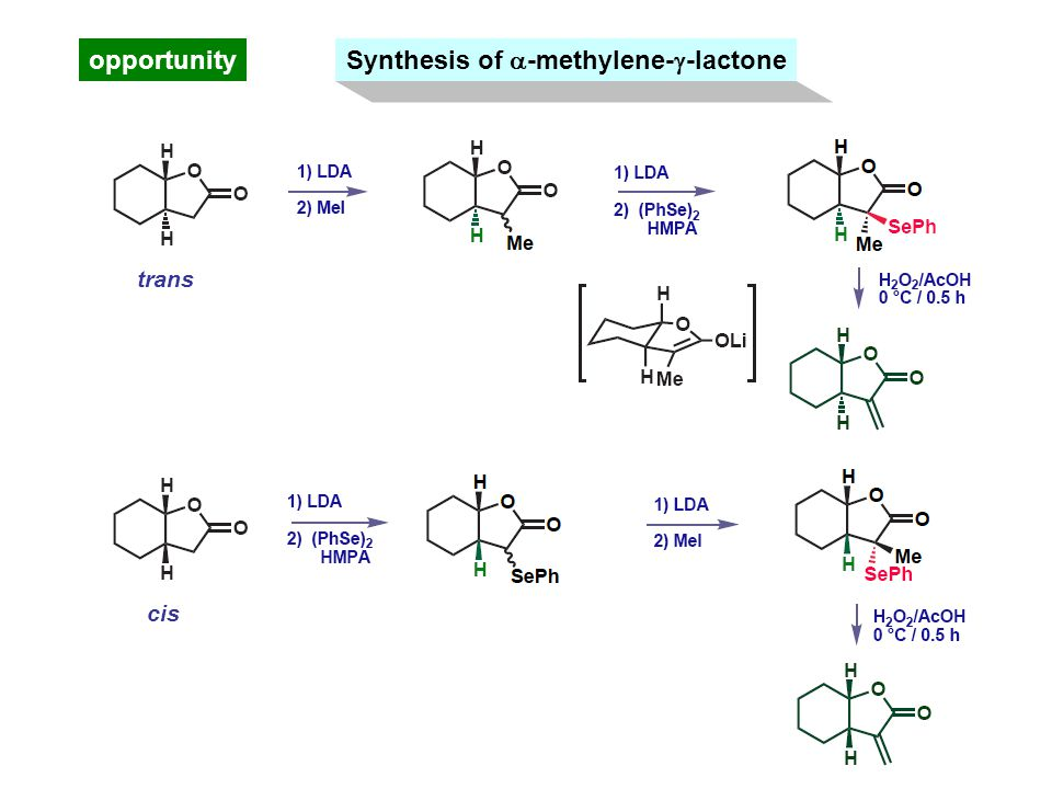 opportunity Synthesis of  -methylene-  -lactone trans cis