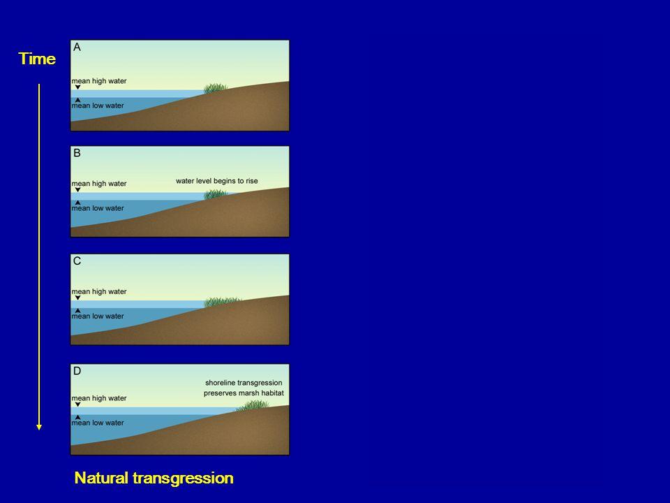 Bulkhead intervention Time Natural transgression