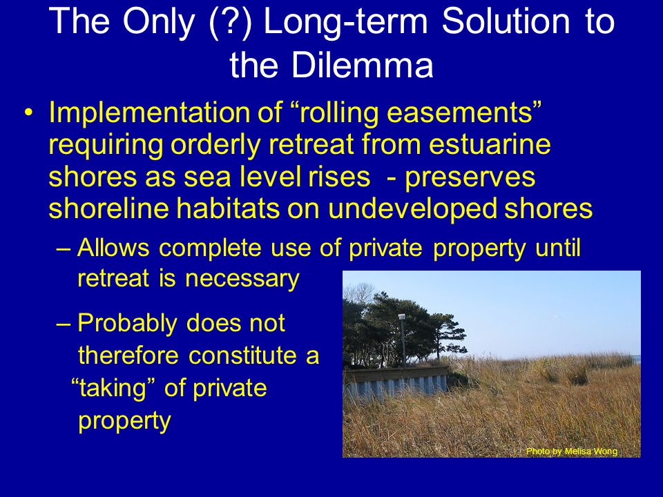 The Only ( ) Long-term Solution to the Dilemma Implementation of rolling easements requiring orderly retreat from estuarine shores as sea level rises - preserves shoreline habitats on undeveloped shores –Allows complete use of private property until retreat is necessary –Probably does not therefore constitute a taking of private property Photo by Melisa Wong