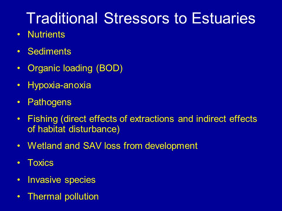 Traditional Stressors to Estuaries Nutrients Sediments Organic loading (BOD) Hypoxia-anoxia Pathogens Fishing (direct effects of extractions and indirect effects of habitat disturbance) Wetland and SAV loss from development Toxics Invasive species Thermal pollution