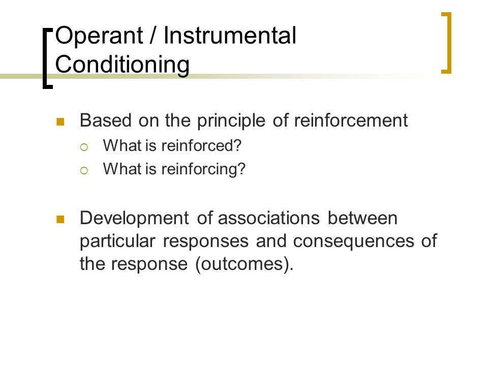 Operant / Instrumental Conditioning Based on the principle of reinforcement  What is reinforced?  What is reinforcing? Development of associations b