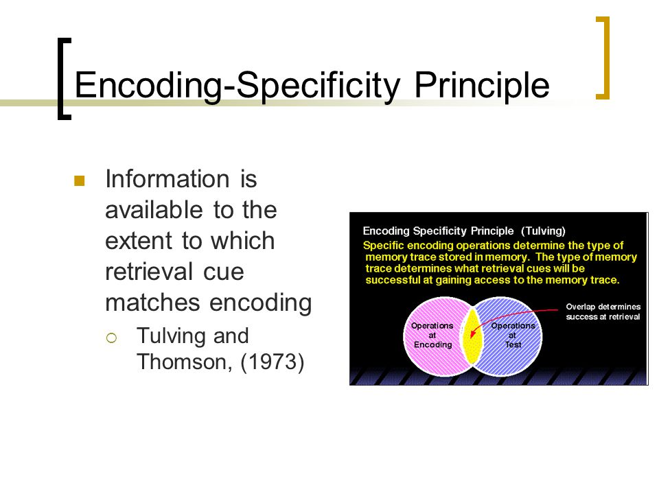Encoding-Specificity Principle Information is available to the extent to which retrieval cue matches encoding  Tulving and Thomson, (1973)
