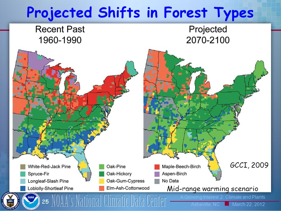 A Growing Interest 2: Climate and Plants Asheville, NC March 22, 2012 25 Projected Shifts in Forest Types Mid-range warming scenario GCCI, 2009