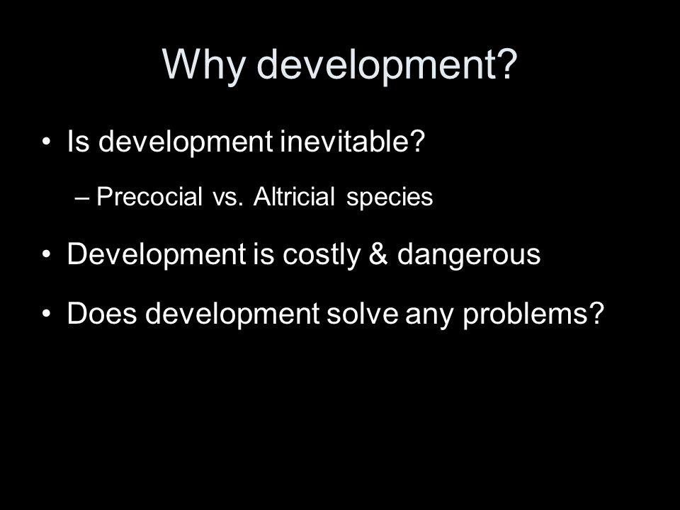 Why development. Is development inevitable. –Precocial vs.