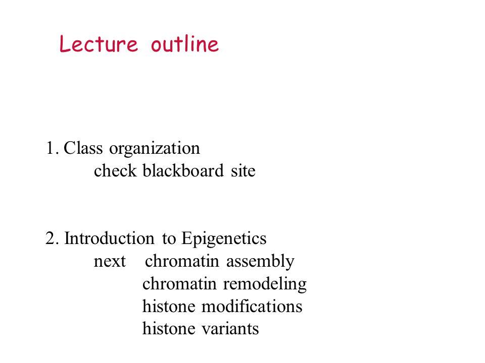 Lecture outline 1.Class organization check blackboard site 2.