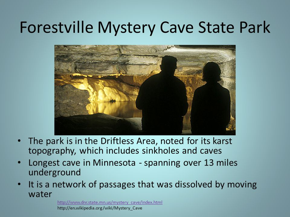 Forestville Mystery Cave State Park The park is in the Driftless Area, noted for its karst topography, which includes sinkholes and caves Longest cave in Minnesota - spanning over 13 miles underground It is a network of passages that was dissolved by moving water http://www.dnr.state.mn.us/mystery_cave/index.html http://en.wikipedia.org/wiki/Mystery_Cave