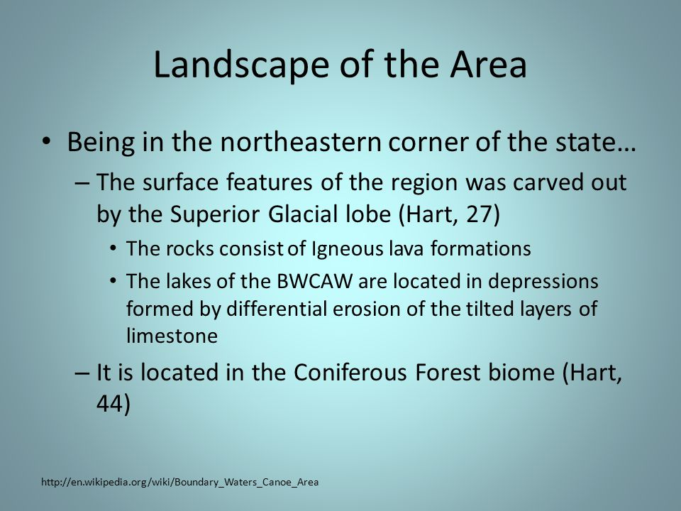 Landscape of the Area Being in the northeastern corner of the state… – The surface features of the region was carved out by the Superior Glacial lobe (Hart, 27) The rocks consist of Igneous lava formations The lakes of the BWCAW are located in depressions formed by differential erosion of the tilted layers of limestone – It is located in the Coniferous Forest biome (Hart, 44) http://en.wikipedia.org/wiki/Boundary_Waters_Canoe_Area