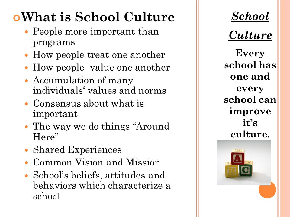 CULTURE VS CLIMATE P ETERSON ( 2002) Personality of school Shared experiences (both in and outside the school) Traditions Celebrations Sense of Community Norms, Values, Symbols and Stories Physical Appearance Outward Indicators Displays of student work Safe and welcoming environment CULTURECLIMATE