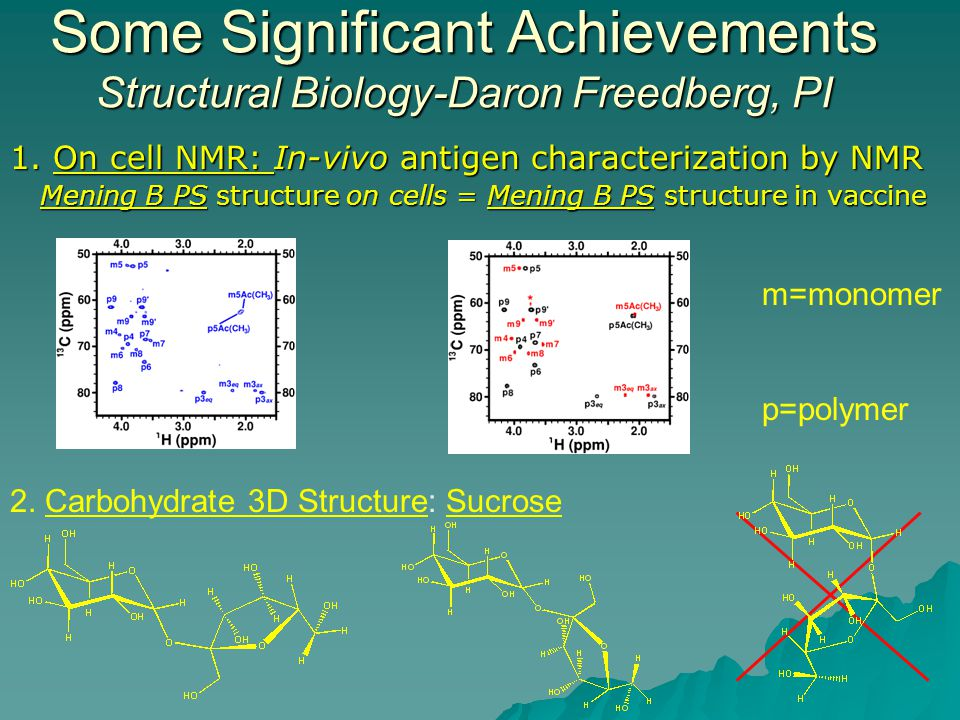 Some Significant Achievements Structural Biology-Daron Freedberg, PI 1.