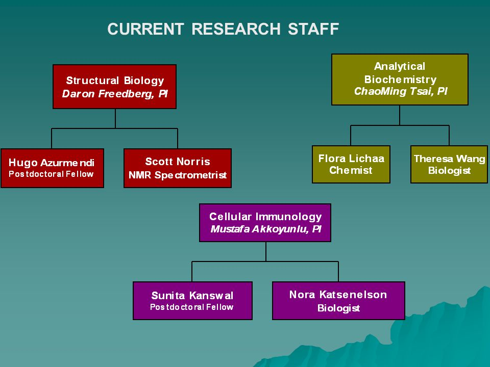 CURRENT RESEARCH STAFF