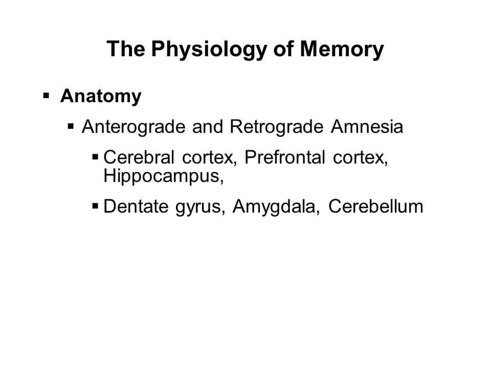 The Physiology of Memory  Anatomy  Anterograde and Retrograde Amnesia  Cerebral cortex, Prefrontal cortex, Hippocampus,  Dentate gyrus, Amygdala, Cerebellum