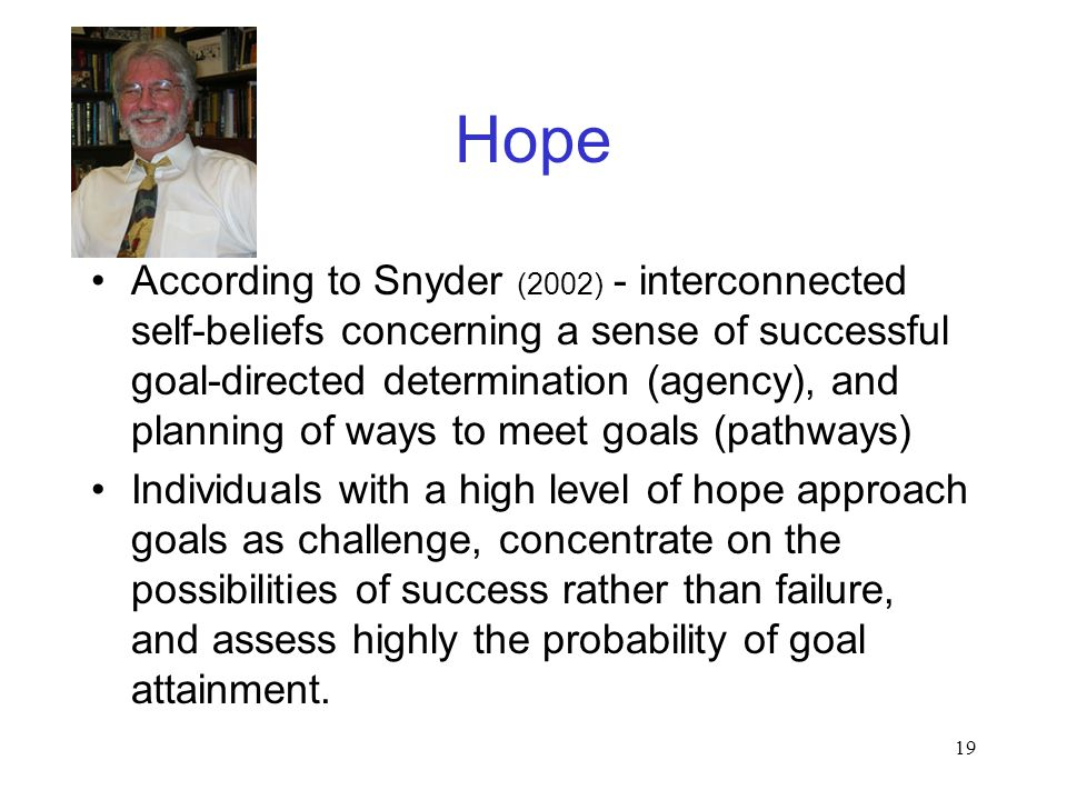19 Hope According to Snyder (2002) - interconnected self-beliefs concerning a sense of successful goal-directed determination (agency), and planning of ways to meet goals (pathways) Individuals with a high level of hope approach goals as challenge, concentrate on the possibilities of success rather than failure, and assess highly the probability of goal attainment.