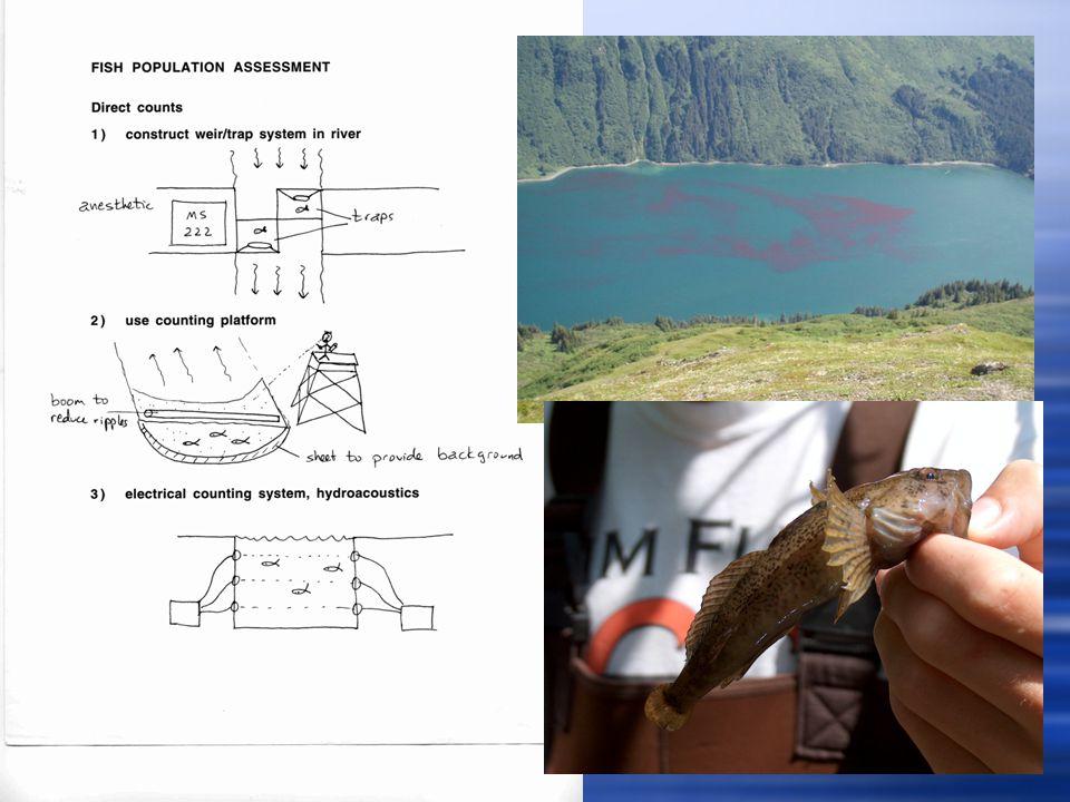 Fish Population Assessment  Estimating population size  1) Plot method  2) Mark and recapture (Peterson method)  3) Mark and recapture (Schnabel method)  4) Change in ratio or dichotomy method  5) Removal sampling (Zippin method)