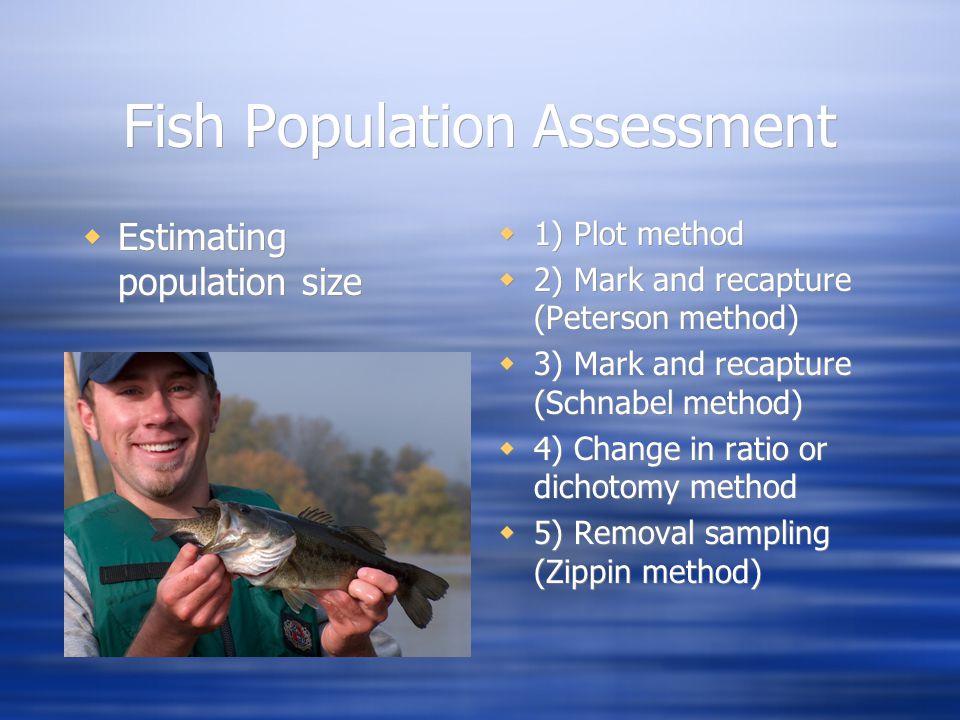 Plot Method Total population area Size of the plot Average number of fish per plot Population estimate