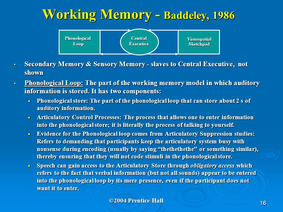 16 Working Memory - Baddeley, 1986 Secondary Memory & Sensory Memory - slaves to Central Executive, not shown Secondary Memory & Sensory Memory - slav