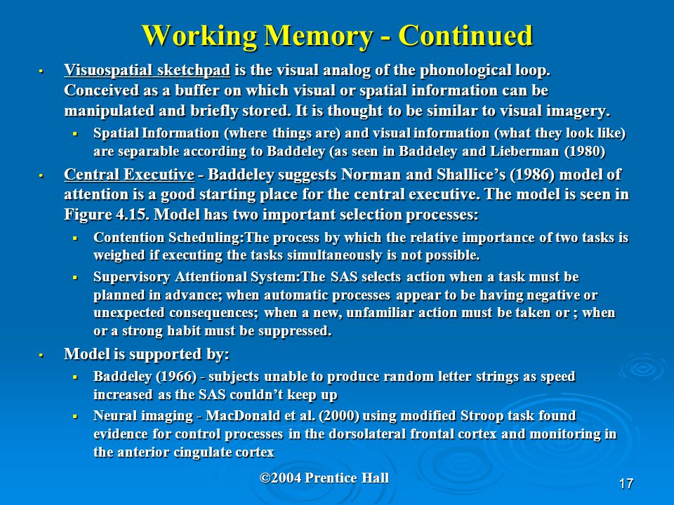 17 Working Memory - Continued Visuospatial sketchpad is the visual analog of the phonological loop.