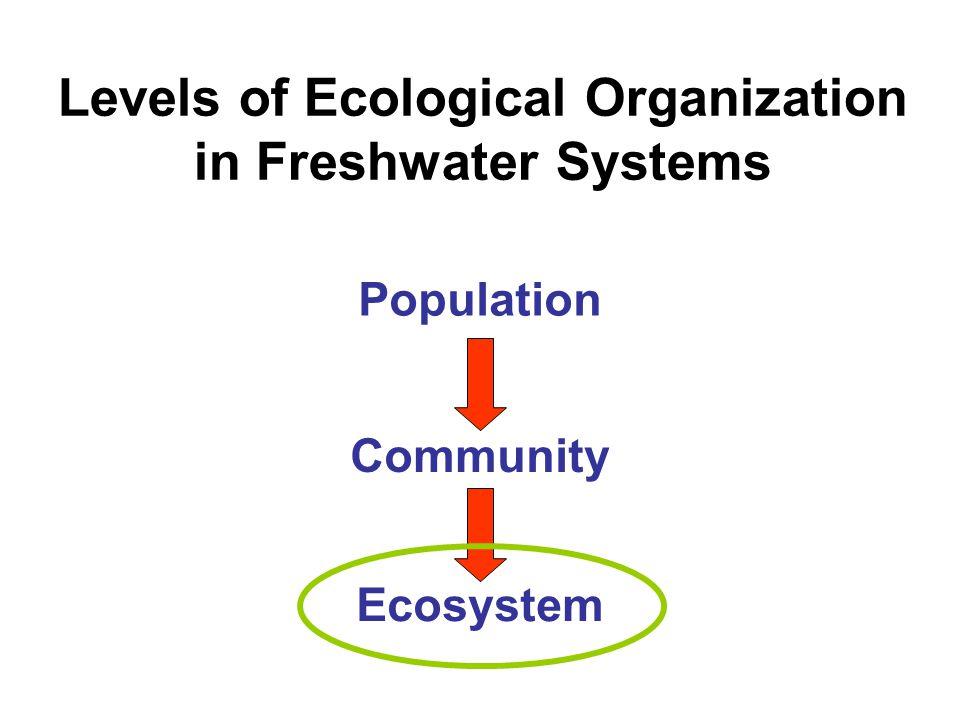 Predator Communities Forest Stream