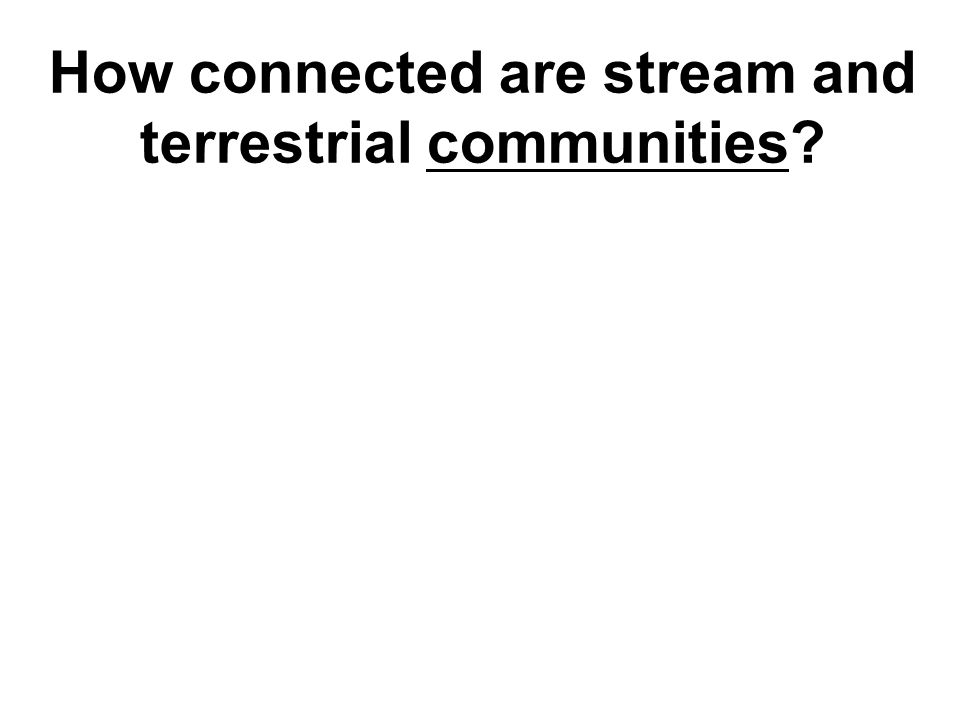 How connected are stream and terrestrial communities?