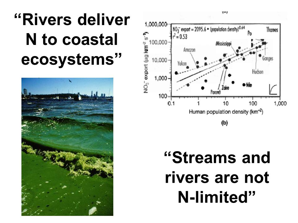 """Rivers deliver N to coastal ecosystems"" ""Streams and rivers are not N-limited"""