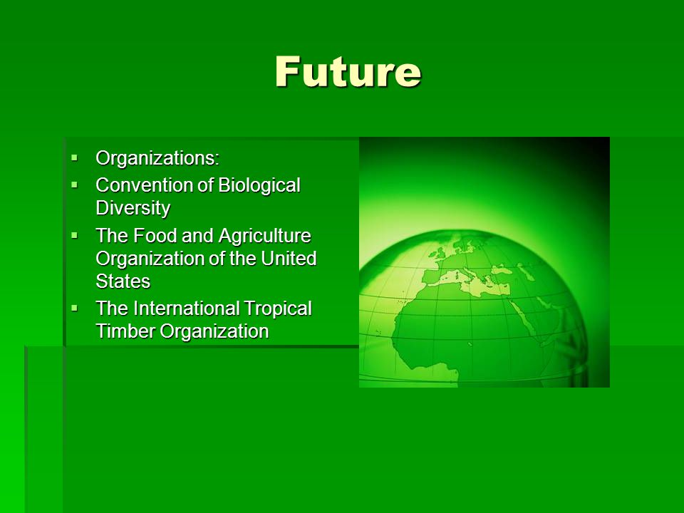 Future  Organizations:  Convention of Biological Diversity  The Food and Agriculture Organization of the United States  The International Tropical Timber Organization