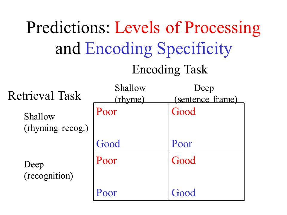Predictions: Levels of Processing and Encoding Specificity Good Poor Good Poor Good Encoding Task Shallow Deep (rhyme) (sentence frame) Retrieval Task Shallow (rhyming recog.) Deep (recognition)