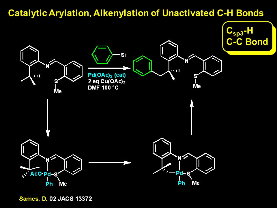 Catalytic Arylation, Alkenylation of Unactivated C-H Bonds C sp3 -H C-C Bond