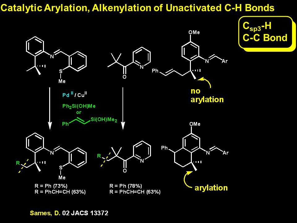 C sp3 -H C-C Bond Catalytic Arylation, Alkenylation of Unactivated C-H Bonds