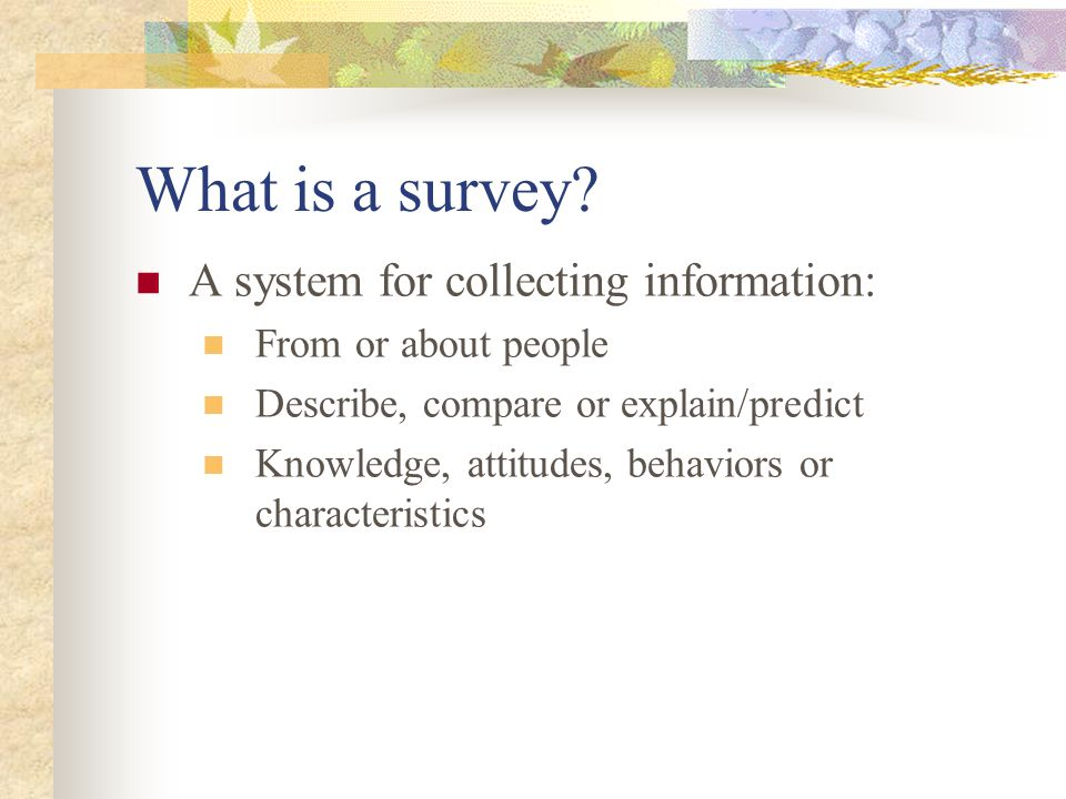 What is a survey.