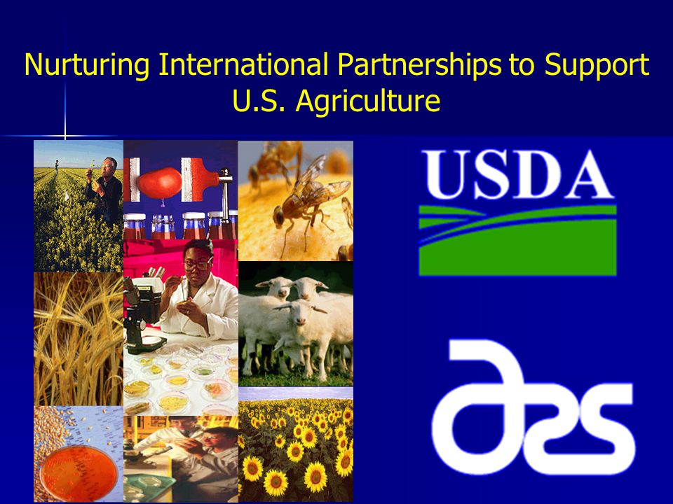 Contact Info Melanie Peterson International Affairs Specialist Office of International Research Programs Agricultural Research Service, USDA Tel: 301-504-4540 Email: Melanie.Peterson@ars.usda.gov Melanie.Peterson@ars.usda.gov Fax: 301-504-4518