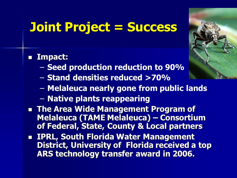 Joint Project = Success Impact: Impact: – –Seed production reduction to 90% – –Stand densities reduced >70% – –Melaleuca nearly gone from public lands – –Native plants reappearing The Area Wide Management Program of Melaleuca (TAME Melaleuca) – Consortium of Federal, State, County & Local partners The Area Wide Management Program of Melaleuca (TAME Melaleuca) – Consortium of Federal, State, County & Local partners IPRL, South Florida Water Management District, University of Florida received a top ARS technology transfer award in 2006.