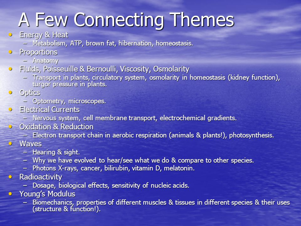 A Few Connecting Themes Energy & Heat Energy & Heat –Metabolism, ATP, brown fat, hibernation, homeostasis. Proportions Proportions –Anatomy Fluids, Po