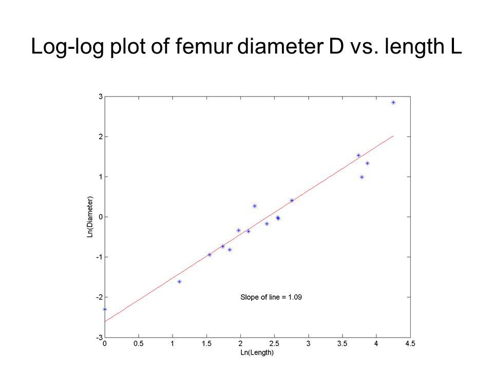 Log-log plot of femur diameter D vs. length L