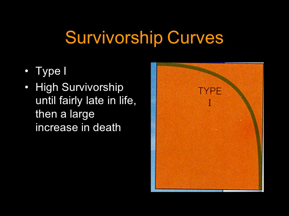 Survivorship Curves Type I High Survivorship until fairly late in life, then a large increase in death