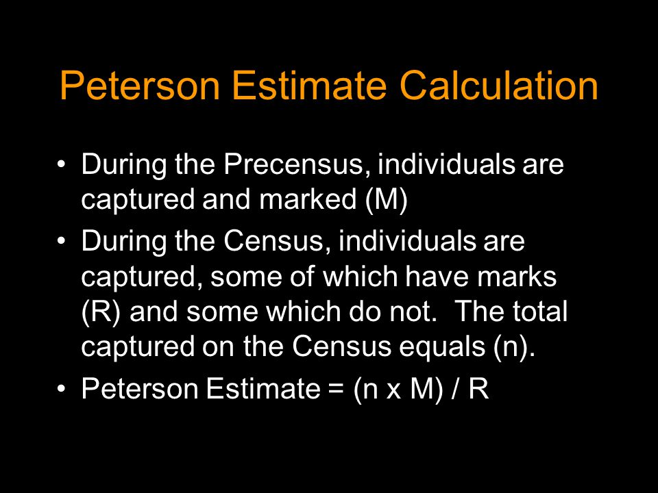 Peterson Estimate Calculation During the Precensus, individuals are captured and marked (M) During the Census, individuals are captured, some of which