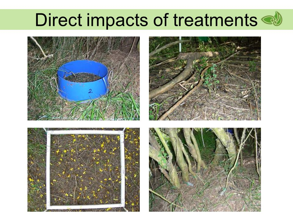 Direct impacts of treatments