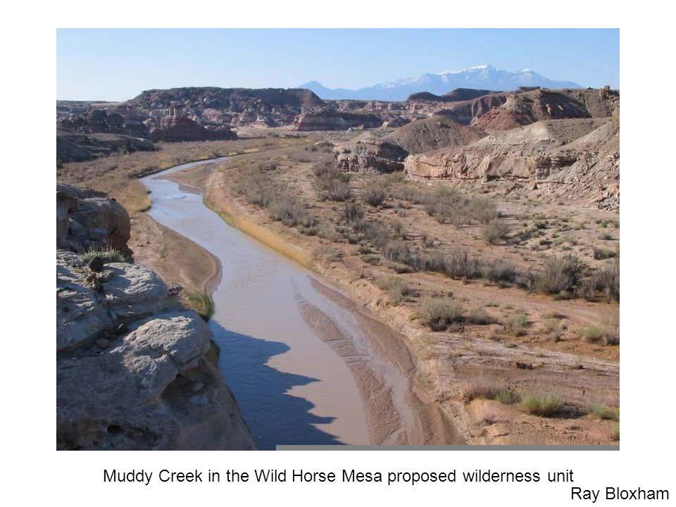 Muddy Creek in the Wild Horse Mesa proposed wilderness unit Ray Bloxham