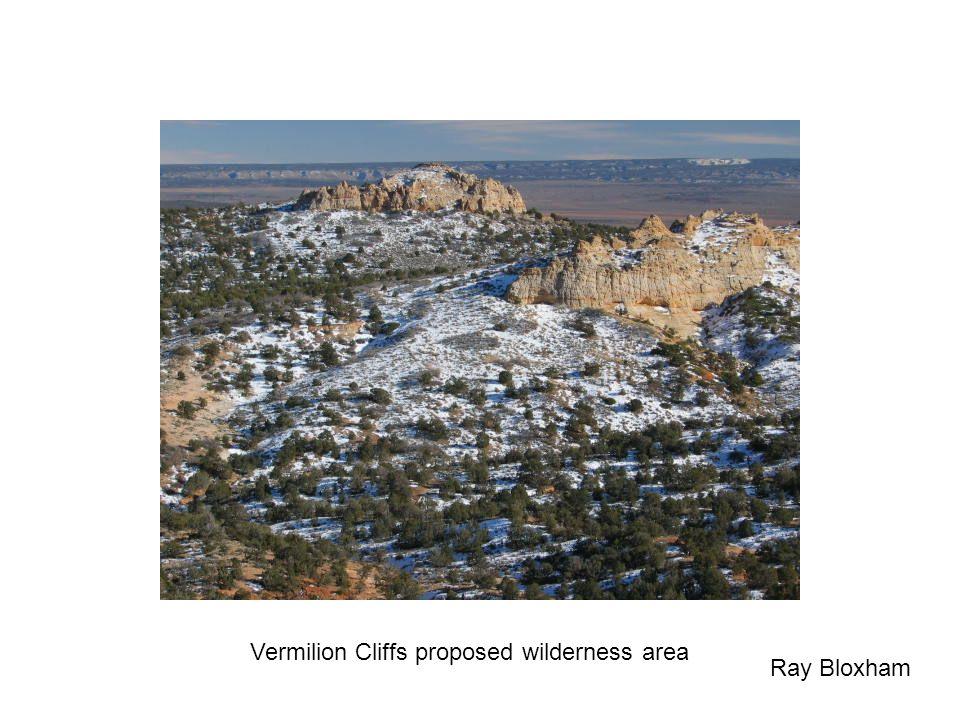 Vermilion Cliffs proposed wilderness area Ray Bloxham