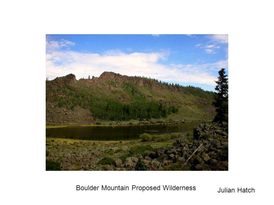 Boulder Mountain Proposed Wilderness Julian Hatch
