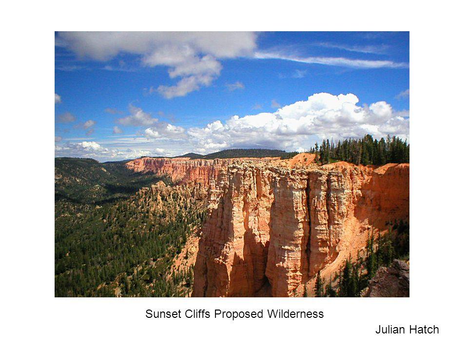 Julian Hatch Sunset Cliffs Proposed Wilderness