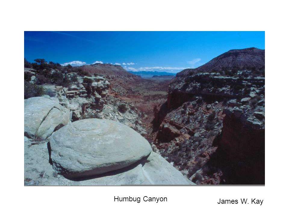 Humbug Canyon James W. Kay