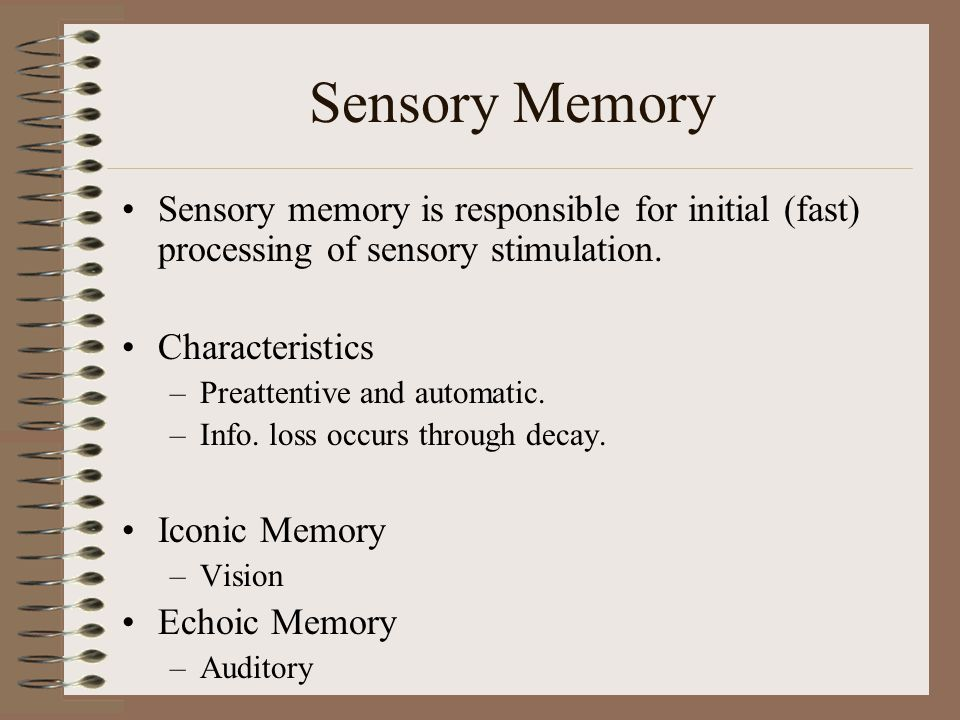 Sensory Memory Sensory memory is responsible for initial (fast) processing of sensory stimulation.
