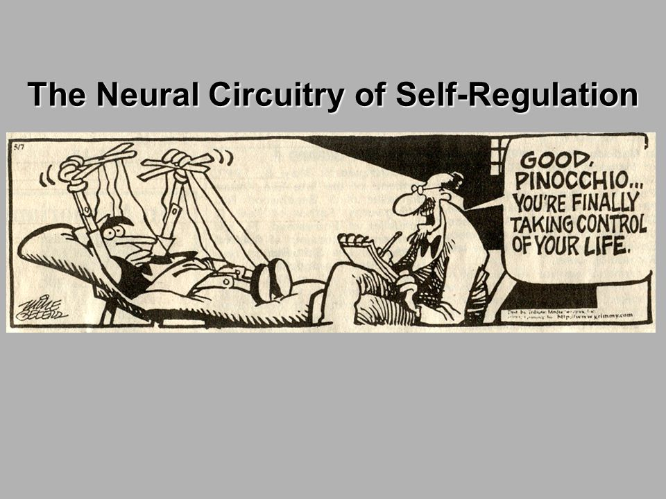 The Neural Circuitry of Self-Regulation