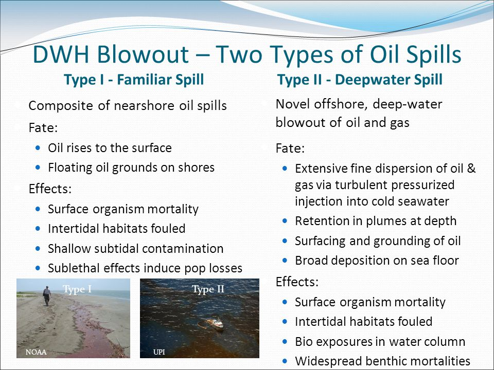 DWH Blowout – Two Types of Oil Spills Type I - Familiar Spill Composite of nearshore oil spills Fate: Oil rises to the surface Floating oil grounds on shores Effects: Surface organism mortality Intertidal habitats fouled Shallow subtidal contamination Sublethal effects induce pop losses Type II - Deepwater Spill Novel offshore, deep-water blowout of oil and gas Fate: Extensive fine dispersion of oil & gas via turbulent pressurized injection into cold seawater Retention in plumes at depth Surfacing and grounding of oil Broad deposition on sea floor Effects: Surface organism mortality Intertidal habitats fouled Bio exposures in water column Widespread benthic mortalities UPINOAA Type IIType I