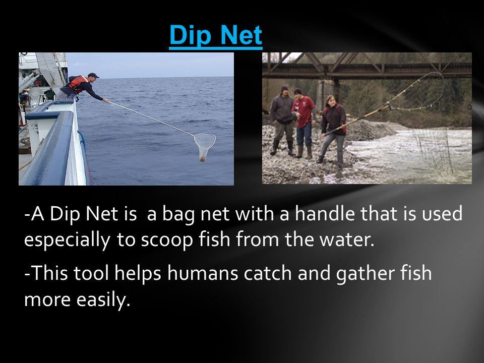 -A Dip Net is a bag net with a handle that is used especially to scoop fish from the water. -This tool helps humans catch and gather fish more easily.