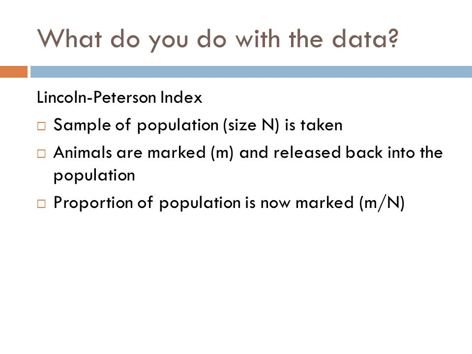 What do you do with the data.