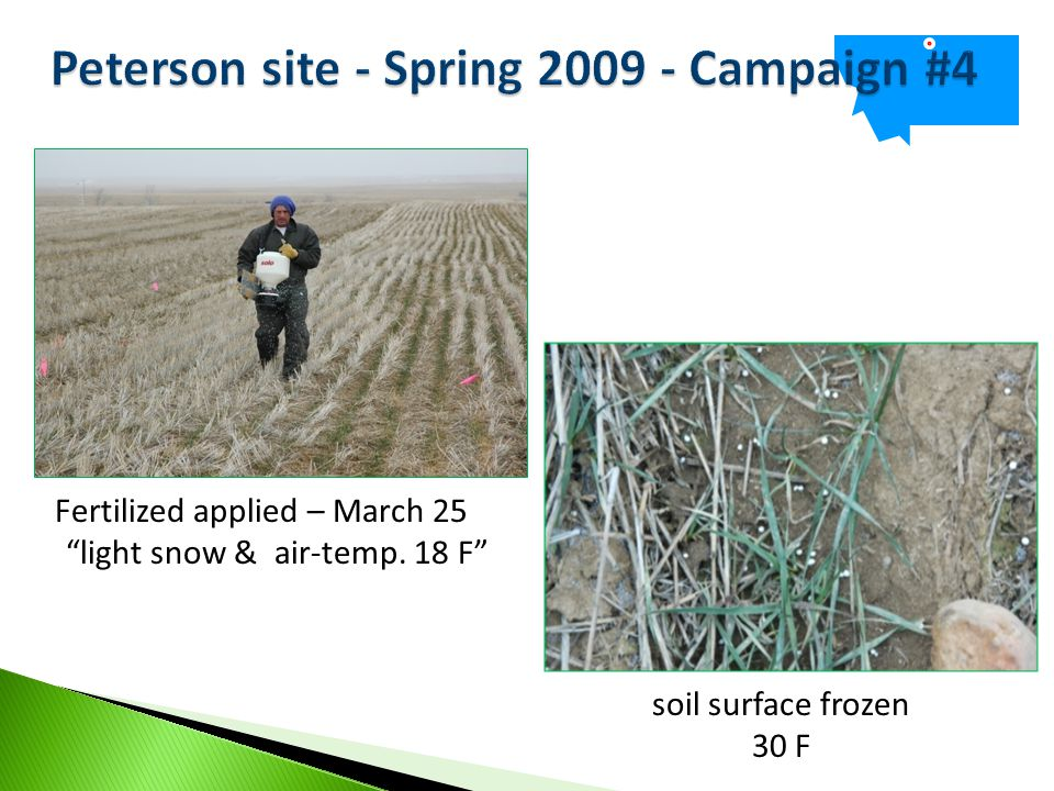 Fertilized applied – March 25 light snow & air-temp. 18 F soil surface frozen 30 F